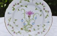 fuschia crocus plate